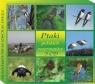 Ptaki Polskich Rezerwatów 3 CD SOLITON