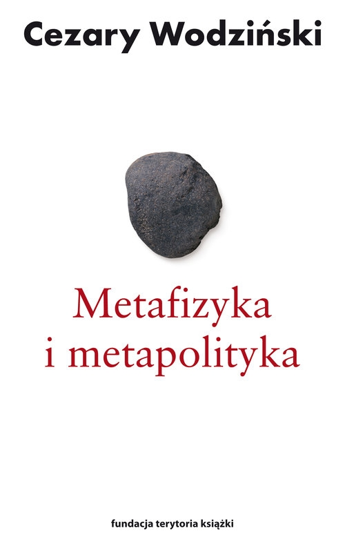 Metafizyka i metapolityka Czarne zeszyty Heideggera Wodziński Cezary
