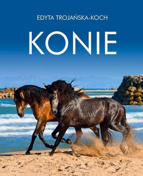 Konie Trojańska-Koch Edyta