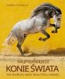 Najpiękniejsze konie świata Gabriele Boiselle