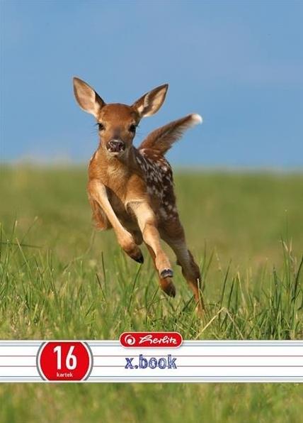Zeszyt A5/16k w podwójną linię Animals mix (9563545)