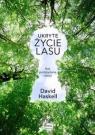 Ukryte życie lasu Haskell David