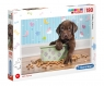 Puzzle SuperColor 180: Lovely Puppy (29754) Wiek: 8+