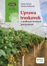Uprawa truskawek w podłożach inertnych pod daszkami