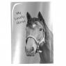 Notes A5 z lustrzaną okładką Paso Horse (PP19KO-3685)