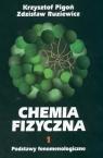 Chemia fizyczna Tom 1 Podstawy fenomenologiczne Pigoń Krzysztof, Ruziewicz Zdzisław