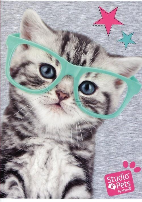 Zeszyt A5 Studio Pets w linie 32 kartki