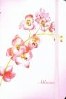 Adresownik Orchidea