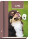 Terminarz 2018 - B7 Kolorowy - pies