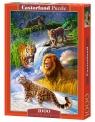 Puzzle Big Cats 1000 (C-103553)