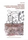Funkcje miasta a zawartość i rozmieszczenie metali ciężkich, metaloidów i Plak Andrzej