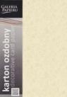Papier ozdobny (wizytówkowy) LIŚCIE KREMOWY 250g