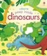 Peep inside dinosaurs Milbourne Anna