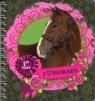 Kołonotatnik Konie