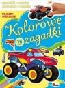 Kolorowe zagadki Pojazdy specjalne Kozera Piotr