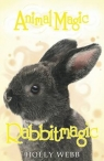 Animal Magic: Rabbitmagic Webb Holly