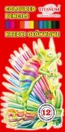 Kredki ołówkowe 12 kolorów. Kameleon