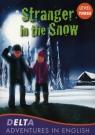 Stranger in the Snow Level 3