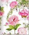 Adresownik Duży Ogród róż