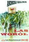 Las wokół  (Audiobook) Kalinin Andrzej