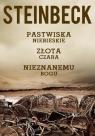 Pastwiska Niebieskie Złota Czara Nieznanemu bogu  Steinbeck John