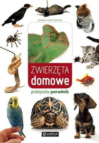 Zwierzęta domowe Praktyczny przewodnik Kapusta Joanna, Kapusta Piotr