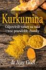 Kurkumina odpowiedź natury na raka i inne przewlekłe choroby Goel Ajay