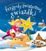 Przygody świątecznej gwiazdki A. Nożyńska-Demianiuk