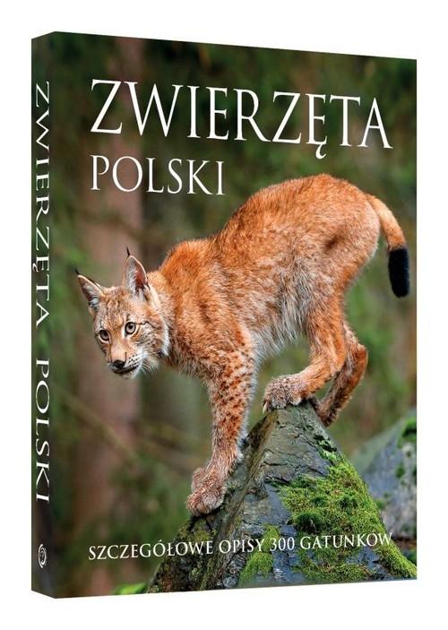 Zwierzęta Polski Szczegółowe opisy 300 gatunków Kapusta Joanna dr hab., Kapust