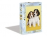 Puzzle Miłe rasy psów Nice beagles (30356)