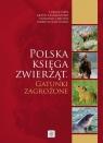 Polska księga zwierząt Gatunki zagrożone Taszakowski Artur, Chłond Dominik, Kanturski Mariusz, Depa Łukasz