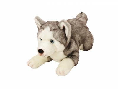 Suki, Husky leżący 35 cm (12057)
