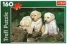 Puzzle 160 elementów Małe Labradory (15157)