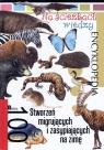 Na ścieżkach wiedzy. 100 stworzeń migrujących i zasypiających na zimę