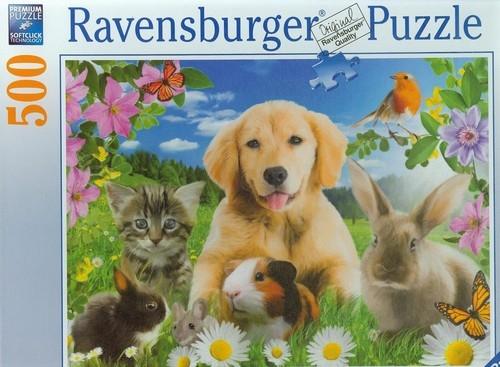 Puzzle 500 Domowe zwierzaki  (142576)