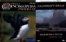 Wielka encyklopedia zwierząt. Ptaki. Tom 12 + DVD
