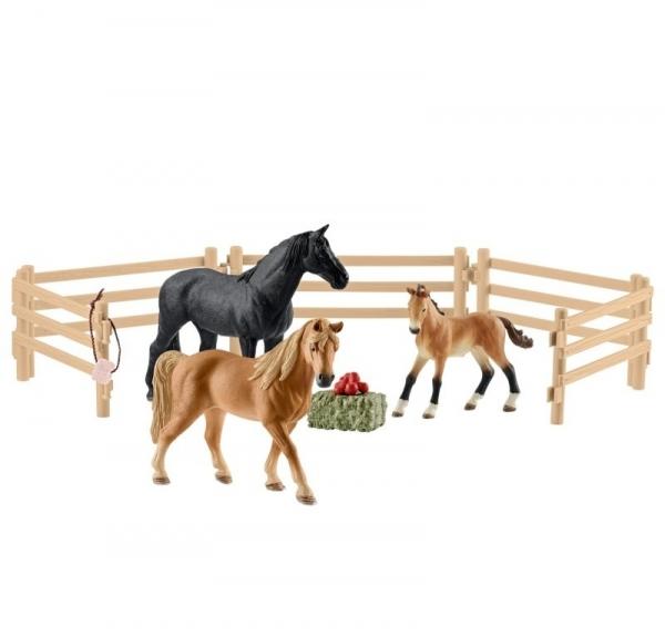 Koń Tennessee Walker na pastwisku - 42391