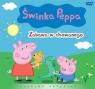 Świnka Peppa Zabawa w chowanego oraz 12 prosiaczkowych opowieści