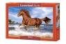 Puzzle 500: Koń na plaży (B-52578)