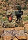 Doświadczenia życiowe żołnierzy zawodowych na misjach stabilizacyjnych Molesztak Aldona M.