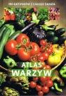 Atlas warzyw 180 gatunków z całego świata Gawłowska Agnieszka