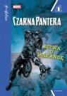 Czarna Pantera