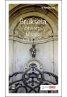 Bruksela Antwerpia Brugia Gandawa Travelbook