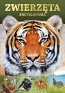 Zwierzęta encyklopedia