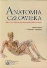 Anatomia człowieka 1200 pytań testowych jednokrotnego wyboru Czerwiński Florian, Kozik Wojciech, Ziętek Zbigniew