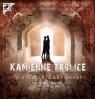Kamienne tablice  (Audiobook)