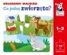 Kapitan Nauka. Co jedzą zwierzęta? Układanki malucha Wiek: 1+ Gabriela Bieniek-Zaremba