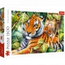 Puzzle 1500: Dwa tygrysy (26159)