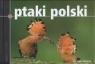 Ptaki Polski  Karetta Marcin, Szokalski Marek