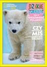 Dzikie Zwierzęta 19 Niedźwiedź polarny